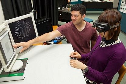 Developing the Bionic Eye