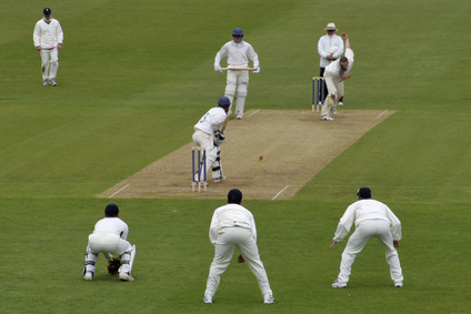 Feeling Threatened By Cricket? See It As An Opportunity Instead!