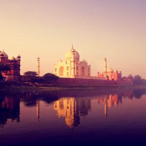 Exotic India Tour: Royal Palaces & Bengal Tiger Safari