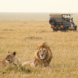Private Luxury Tour For Two with Safari: South Africa & Zambia