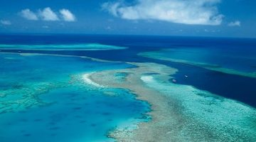 The Hamilton Island Reef Dive Experience
