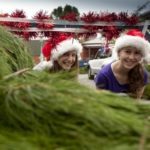 Christmas Giving Grows on Trees at Oxfam Australia