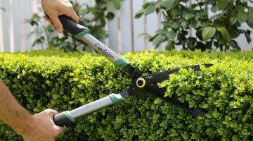 Snip your garden into shape for Spring