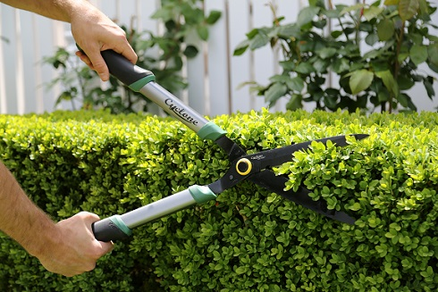 Snip your garden into shape for Spring